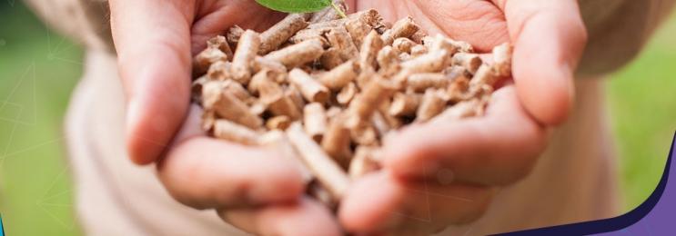 زیست توده یا Biomass چیست؟