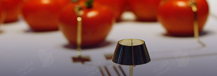 خانههای خود را با لامپ گوجهای روشن کنید